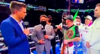 Jake Paul's Goons Rush The Ring After Canelo Alvarez's Match