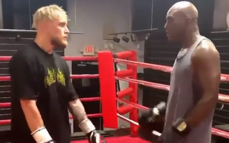 JAKE-PAUL-ENGAGES-IN-TRAINING-SESSION-WITH-EVANDER-HOLYFIELD