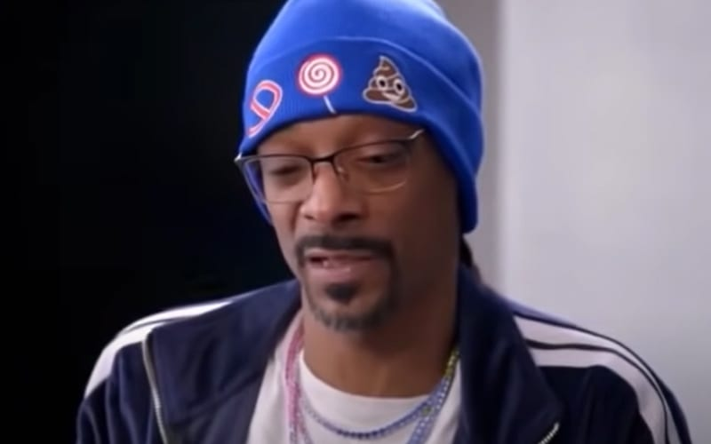 Snoop Dogg Blasts Emmy Awards For Not Giving Enough Awards To Black Actors