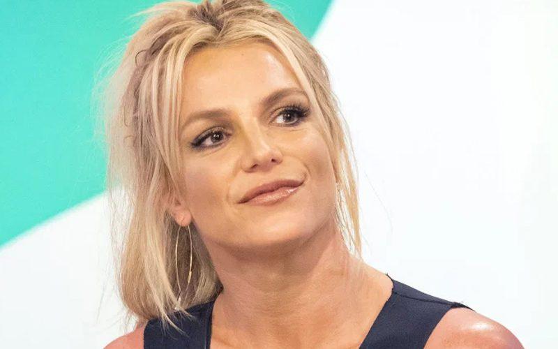 Britney Spears' Conservatorship Ending Won't Change Child Custody Agreement