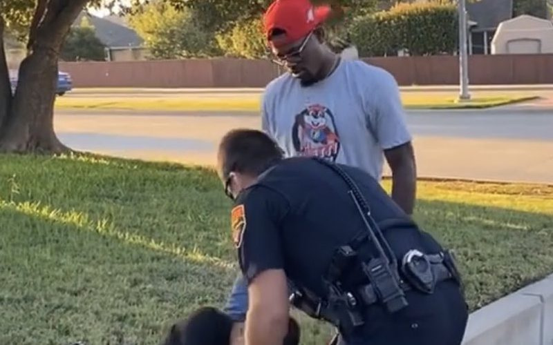 Kevin Holland Takes Down Car Thief In His Neighborhood
